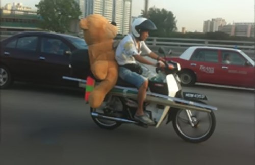Motorcycle-bear-Pillion